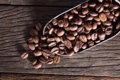 Gebratene Kaffeebohne stockbild