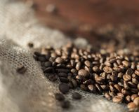 Gebratene Kaffeebohnen Stockfotografie