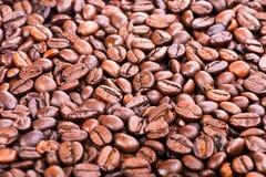 Gebratene Kaffeebohnen Stockbilder