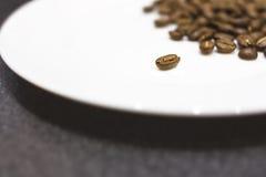 Gebratene Kaffeebohnen auf einer weißen Platte Stockbilder