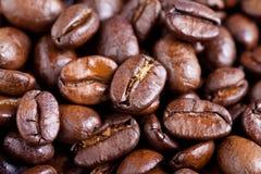 Gebratene Kaffeebohnen - Makro Lizenzfreie Stockbilder