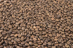 Gebratene Kaffeehintergründe Lizenzfreies Stockbild