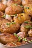 Gebratene Kartoffeln mit Knoblauch Lizenzfreie Stockfotografie