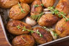 Gebratene Kartoffeln mit Knoblauch Lizenzfreies Stockbild