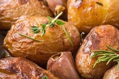 Gebratene Kartoffeln mit Knoblauch Stockbild