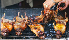 Gebratene Meerschweinchen in Ecuador Lizenzfreies Stockfoto