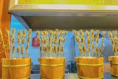 Gebratene Skorpionsstraße Nahrung an gehender Straße Wangfujing und an Straßennahrung in Peking-Stadt stockfoto