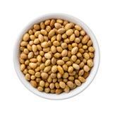 Gebratene Sojabohnenöl-Nüsse in einer keramischen Schüssel Lizenzfreie Stockbilder