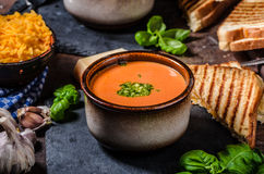 Gebratene Tomate-Suppe stockbilder
