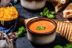 Gebratene Tomate-Suppe Stockbilder