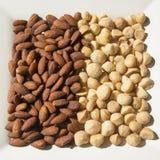 Gebratene und gesalzte Mandeln und Macadamia-Nüsse Stockfotos