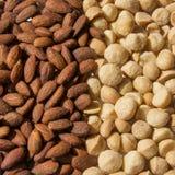 Gebratene und gesalzte Mandeln und Macadamia-Nüsse Stockfotografie