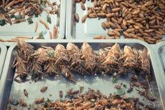 Gebratene verschiedene Arten der Insekten Stockfotografie