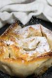 Gebratener Kuchen mit Kürbis und Puderzucker stockbilder