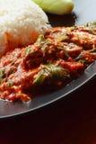 Gebratener Reis des Basilikums, eingemachter Fisch, Thailand Stockbild