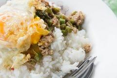 Gebratener Reis des Schweinefleisch mit populärem Lebensmittel des Basilikums von Thailand Stockfotos