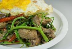 Gebratener Reis und Ei des Referentpilzes. Stockfotos