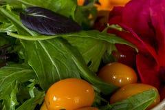 Gebratener Tomaten-und Kopfsalat-Salat Stockfotos