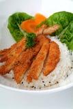 Gebratenes Fleisch mit Reis Stockbilder