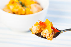 Gebratenes Huhn in der MangoTomatensauce Stockfotos