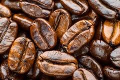 Gebratenes Kaffeearabica Stockfoto