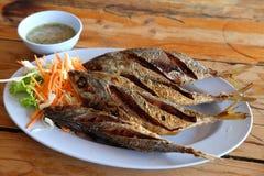 Gebratenes mackarel mit Fischsauce Stockfotos