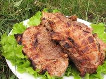 Gebratenes Schweinefleisch auf der Platte stockfotos