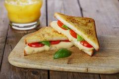 Gebratenes Toastsandwich mit Mozzarella lizenzfreies stockfoto