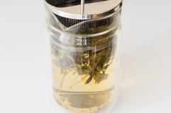 Gebrauter Sage Tea Lizenzfreies Stockbild