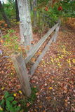 Gebrechlicher Zaun im Holz Lizenzfreie Stockbilder