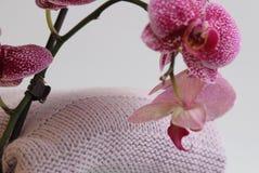 Gebreid kleren, met de hand gemaakt, wol, mohair en katoen Dichtbij hen zijn orchideeën stock foto's