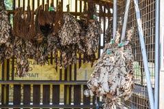 Gebreide takjes van eiken takken met bladeren Bezems voor een bad Dr. Royalty-vrije Stock Foto's