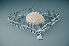 Gebrek aan het vrije denken Royalty-vrije Stock Afbeeldingen
