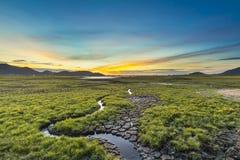 Gebrek aan water op reservoirgebieden Stock Fotografie