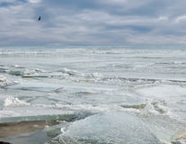 Gebrochen dem Eis auf dem Meer im Winter Lizenzfreies Stockfoto