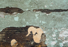 Gebrochene Beschaffenheit der Farbe Alte Farbe auf Holzoberflächenahaufnahme Ansicht der Spitze, Makrophotographie färbte Beschaf Lizenzfreie Stockbilder