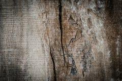 Gebrochene Beschaffenheit des alten Holzes des Schmutzes Lizenzfreie Stockfotografie