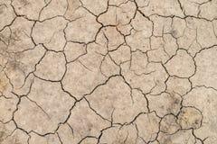 gebrochene Beschaffenheit des trockenen Bodens Erd Stockbilder