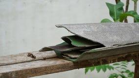 Gebrochene Dachplatte auf dem Holz lizenzfreies stockbild