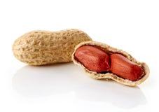 Gebrochene Erdnüsse auf weißem backround Stockfotografie