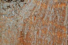 Gebrochene Farbe auf einer hölzernen Wand Wand von den hölzernen Planken mit Farbenspuren Stockbild