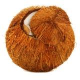 Gebrochene Kokosnuss Stockbild
