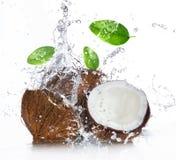 Gebrochene Kokosnuss mit dem Spritzen des Wassers Stockbilder