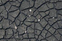 Gebrochener trockener Beschaffenheitsgrundhintergrund des Erdtrockenen Landes, Dehydrierungsanlagen wachsen nicht Stockbilder