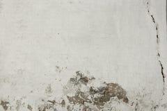 Gebrochenes weißes Backsteinmauer-Fragment Lizenzfreies Stockbild