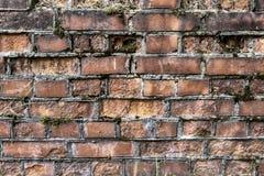 Gebroken bakstenen muurachtergrond in zonnige de zomerdag Abstracte rode de textuurachtergrond van de baksteen oude muur Ruïnes o royalty-vrije stock fotografie