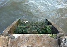 Gebroken Concreet Pier Stair royalty-vrije stock foto