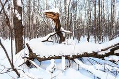 Gebroken die boom als fabelachtige Slang in bos wordt gevormd royalty-vrije stock afbeeldingen