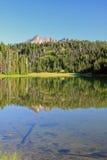Gebroken die Bovenkant in Todd Lake wordt weerspiegeld Royalty-vrije Stock Foto