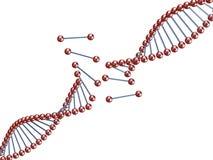 Gebroken DNA Royalty-vrije Stock Afbeelding